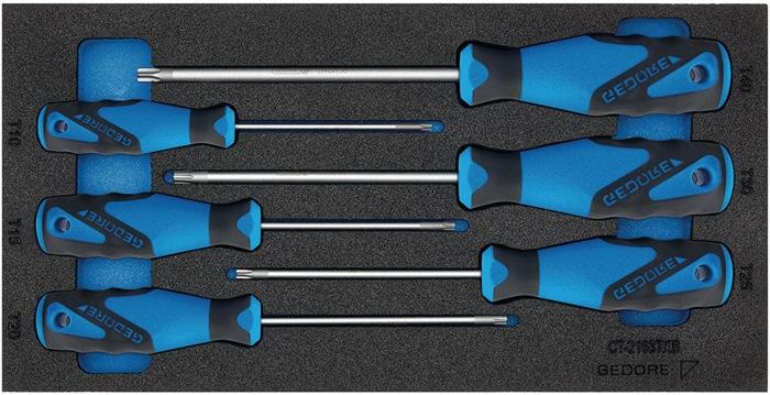 Gereedschapsmodule D.310mmxB.157,5mm 6-dlg. schroevendraaier TORX GEDORE